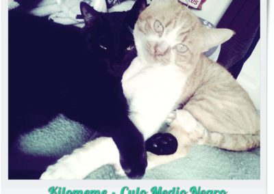KILOMEME Y CULO MN @MontseAmante