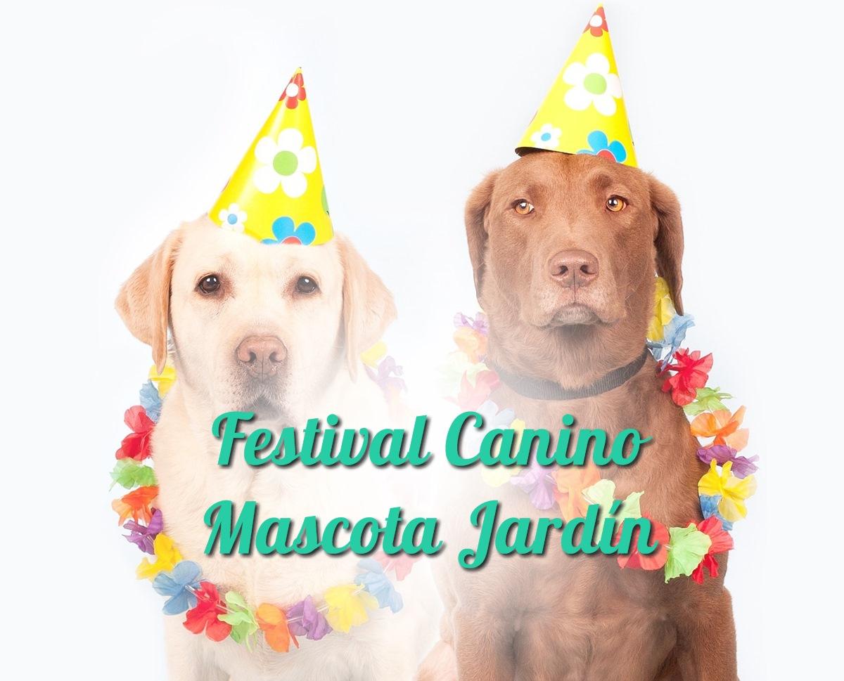 Festival Canino