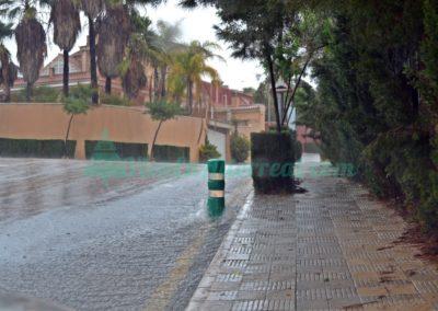 lluvia altorreal (6)