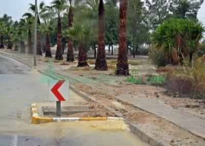 lluvia altorreal (7)