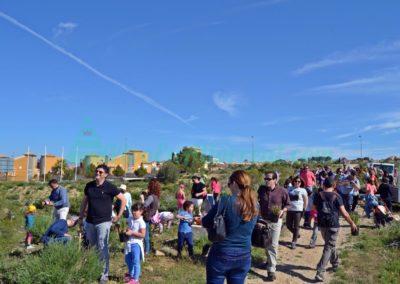 Dia del Arbol 2017 vivo en altorreal (26)