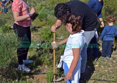 Dia del Arbol 2017 vivo en altorreal (29)