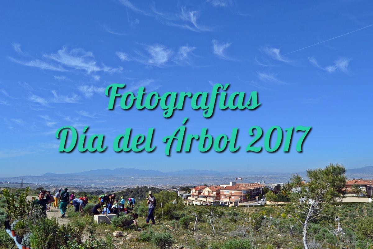 Fotografías Día del Árbol 2017