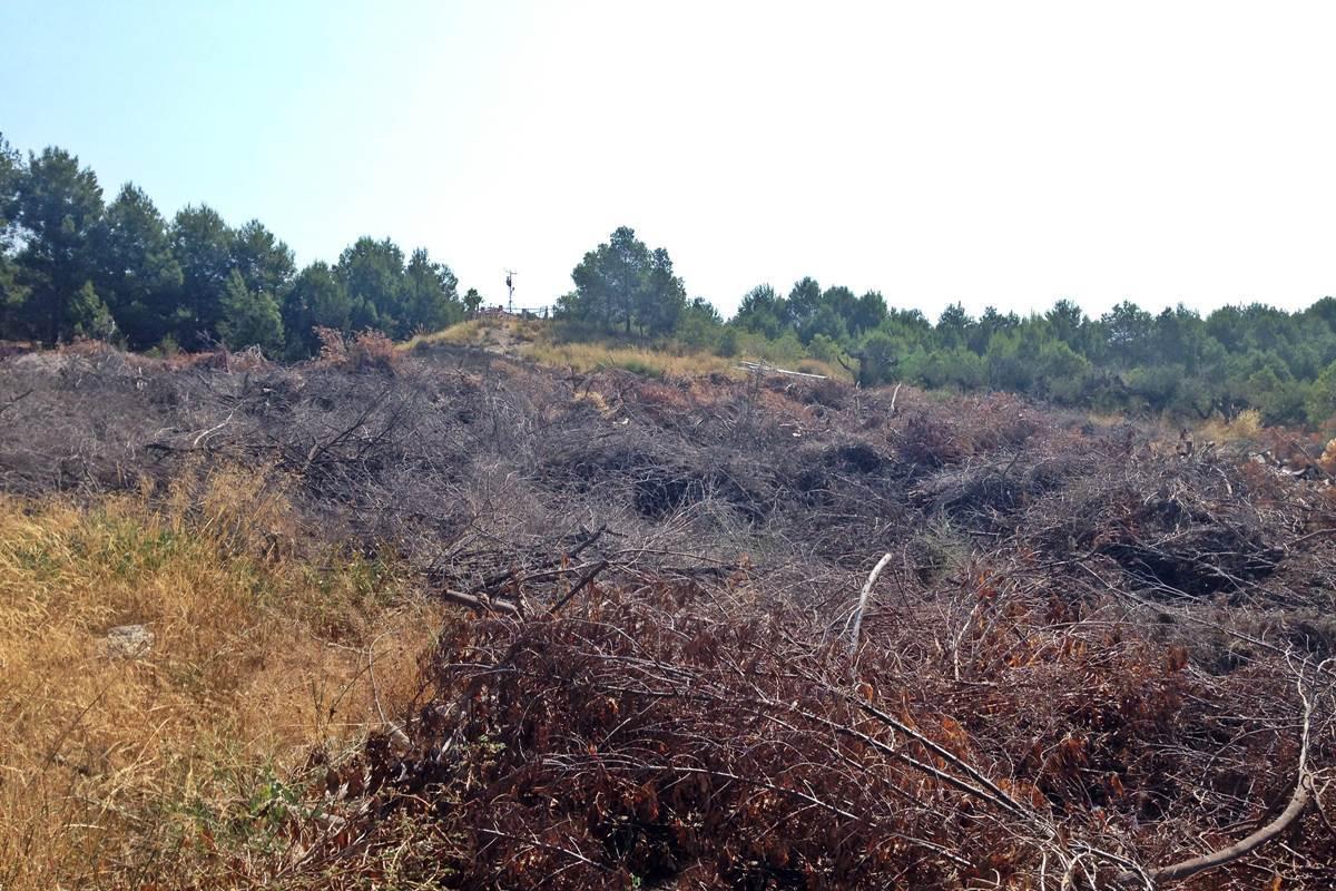 Más allá del golf: riesgo de incendio y vecinos contra el riego