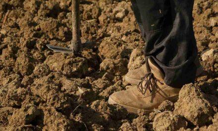 Molina se paraliza por los agricultores