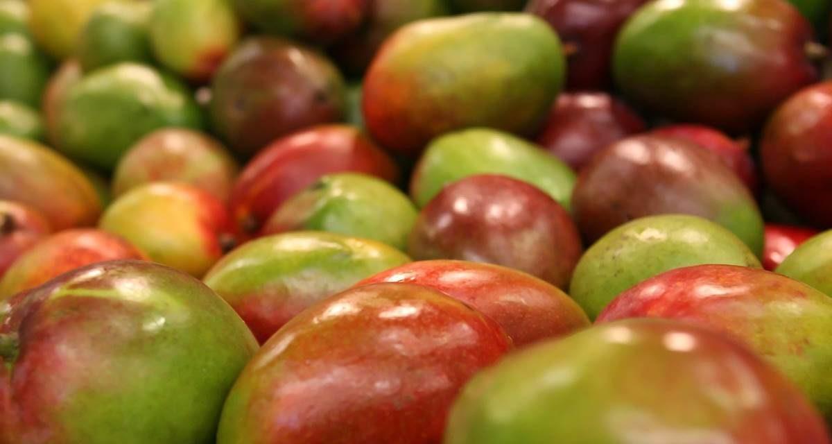 Los grandes beneficios de comer mango para el corazón y el estómago