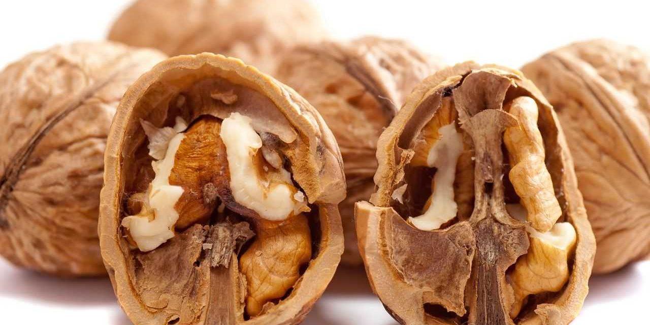 Confirmado: comer nueces reduce los niveles de colesterol y triglicéridos