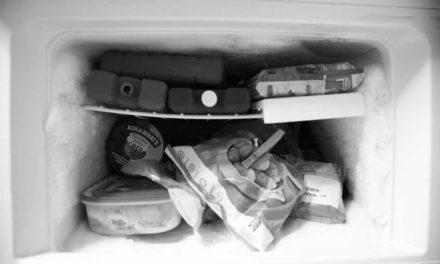 ¿Por qué no es recomendable congelar alimentos descongelados?