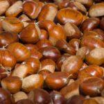 Diez curiosidades sobre las castañas que te sorprenderán