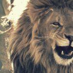 Serengueti: 10 experiencias en la sabana para no olvidar jamás