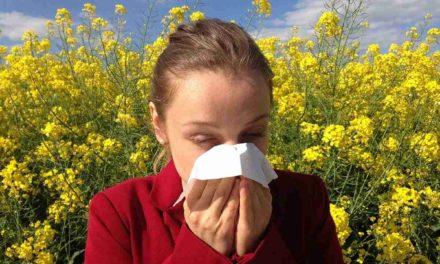 10 plantas frecuentes en España que dan alergia en primavera