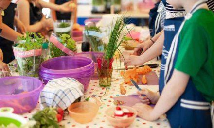 Menús Saludables en centros escolares