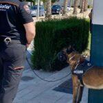 Altorreal, pionera en instaurar una Unidad de Seguridad Canina